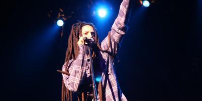 reggae musiker sänger band bands künstler